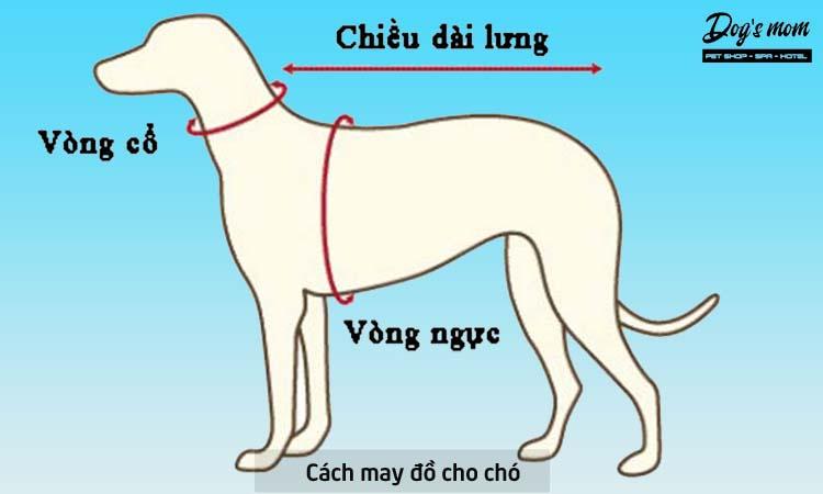 Cách may áo cho chó