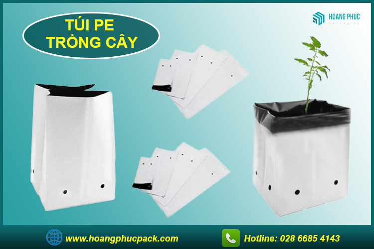 Túi PE trồng cây